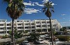 Apartamento La Grande Motte 2p 4 La Grande Motte Miniatura 16