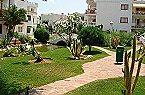 Apartment Playa Romana 2p C 4/6 SV Lat. Alcocéber Thumbnail 24