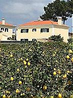 Villa 6-p Villa with private pool Ericeira Thumbnail 16
