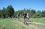Holiday home Campanule 4p 6/8p Giffaumont Champaubert Thumbnail 32
