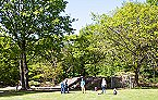 Vakantiepark GE Vakantiewoning 4**** 5 pers. Ede Thumbnail 14
