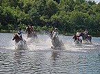 Vakantiepark Finse Bungalow 7P, Comfort Meppen Thumbnail 15