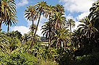 Vakantiehuis House in Gran Canaria 100617 Santa Lucía deTirajana Thumbnail 14
